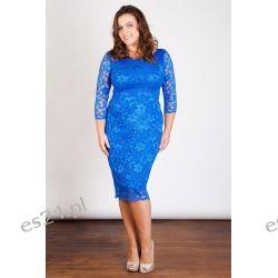 Seksowna sukienka z koronki szafirowa 48