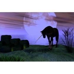 30 - dniowy rytuał celtycki Finvarra - ochrona przed złym sąsiadem, oparty na magii ceremonialnej Ezoteryka