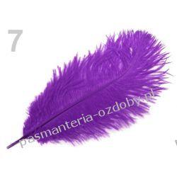 STRUSIE DŁUGIE PIÓRA,  PIÓRKA 20-30cm - fioletowy Przedmioty do ozdabiania