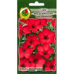 Nasiona 0,5 g Len wielokwiatowy czerwony  nowość