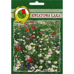 Nasiona 40 g Kwiatowa łąka nowość hit