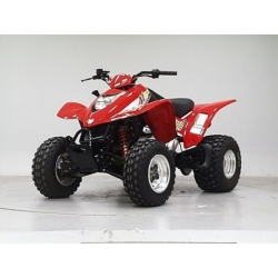 Quad 250 ccm - Maxxer 300 Wide