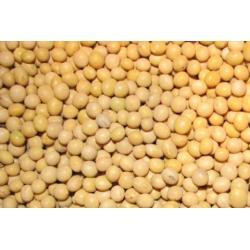 Soja nasiona / ziarno soi - ekspresowa dostawa Pozostałe