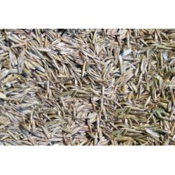 Mieszanka traw dla ptakow 500 g /ekspres/4,00 zł