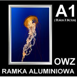 Rama Ramka OWZ aluminiowa zatrzaskowa z folia A1 Biuro i Reklama