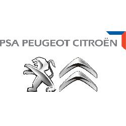 2444GR PSA Peugeot Citroen LINKA ZMIANY BIEGÓW KPL. CITROEN PEUGEOT