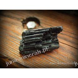 Turmalin surowy - kryształ Skamieliny, minerały i muszle