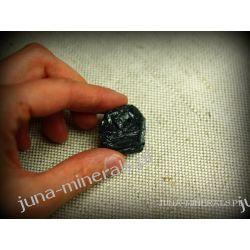 Surowy czarny turmalin Skamieliny, minerały i muszle