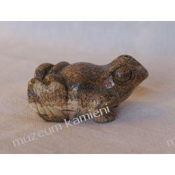 Jaspis żabka