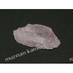 Kunzyt Skamieliny, minerały i muszle