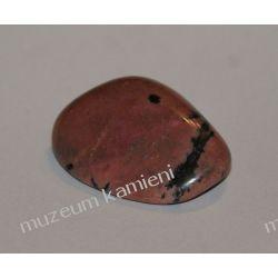 Rodonit oszlifowany ROT02 Skamieliny, minerały i muszle