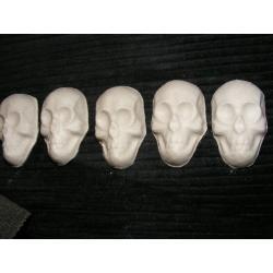 Czaszka,czaszki,5 sztuk Pozostałe
