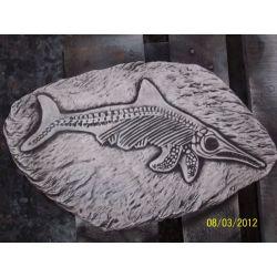 Prehistoryczna ryba odciśnięta w kamieniu!!