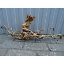 Korzeń driftwood. Dom i Ogród