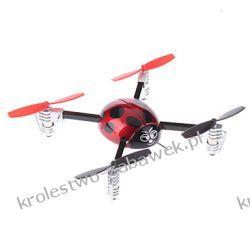 Quadocopter Ladybug 2.4Ghz