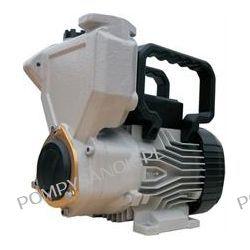 Pompa WZC250 z rączką Pompy i hydrofory