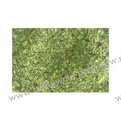 Czubryca zielona 250 g Mieszanki przyprawowe