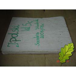 MIĘDZY NAMI KLASA 5 GWO PODRĘCZNIK