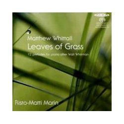 Musik: Leaves of Grass  von Risto-Matti Marin
