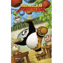 Bücher: Kung Fu Panda 01  von Matt Anderson