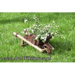 taczki z wikliny, ozdoba ogrodowa donica doniczka