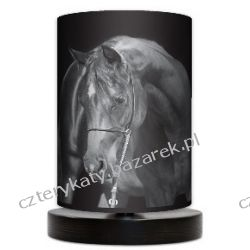 Lampa stojąca mała Black Horse Lampy