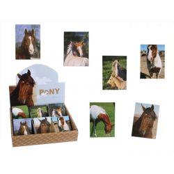Notesik Pony