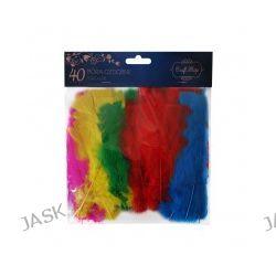 Kolorowe pióra ozdobne 40 sztuk