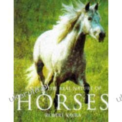 Such is the Real Nature of Horses Robert Vavra Szkutnictwo