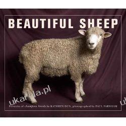 Beautiful Sheep: Portraits of Champion Breeds  Pozostałe