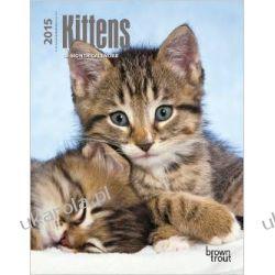 Kalendarz Kittens 2015 Desk Diary Kociaki Notatnik Koty kotki