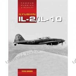 Ilyushin Il-2 Yefim Gordom Pozostałe