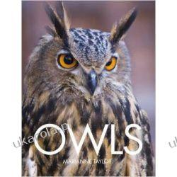 Owls  Kalendarze książkowe