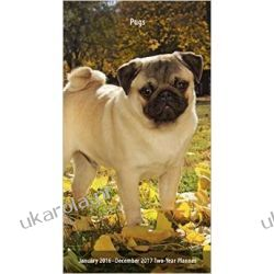Kalendarz mopsy Pugs 2016 Two Year Pocket Planner notatnik notes planer 2letni