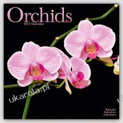 Kalendarz ORCHIDS Calendar 2017 Orchidee Storczyki Pozostałe