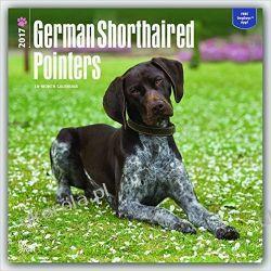 Kalendarz Wyżeł Niemiecki krótkowłosy German Shorthaired Pointers (International Edition) 2017 Square Wall Calendar Adresowniki, pamiętniki