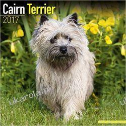 Kalendarz Cairn Terrier Calendar 2017 Projektowanie i planowanie ogrodu