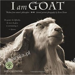 Kalendarz Kozy I Am Goat 2017 Wall Calendar: Animal Portrait Photography Goats koza