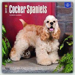 Kalendarz Spaniele Cocker Spaniels 2017 Square Wall Calendar Kalendarze ścienne