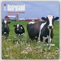 Kalendarz Krowy Dairyland: America's Cow Calendar 2017