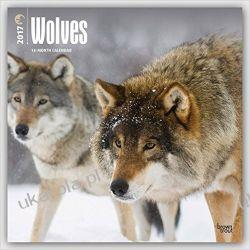 Kalendarz Wolves 2017 Wall Calendar Wilki