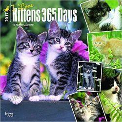 Kalendarz Koty I Love Kittens, 365 Days, 2017 Square Wall Calendar Wokaliści, grupy muzyczne