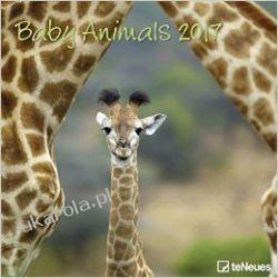 Kalendarz 2017 Baby Animals Calendar Dzieci zwierząt Po hiszpańsku