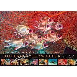 Kalendarz Podwodny Świat Unterwasserwelten 2017 - Underwater Worlds 2017 Calendar Książki i Komiksy