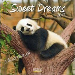 Kalendarz Sweet Dreams 2017 Calendar Książki i Komiksy
