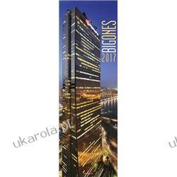 Kalendarz Big Ones 2017 Calendar Architektura Architecture Książki i Komiksy