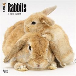 Kalendarz Rabbits 2018 Wall Calendar Króliki Książki i Komiksy