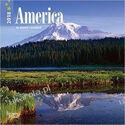 Kalendarz Ameryka America 2018 Calendar Książki i Komiksy