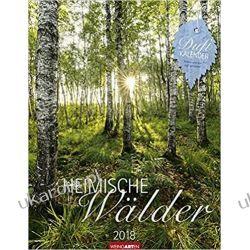 Kalendarz Drzewa Las Heimische Wälder 2018 Calendar Trees Forest