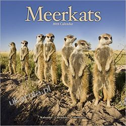 Kalendarz Surykatki Meerkats 2018 Calendar